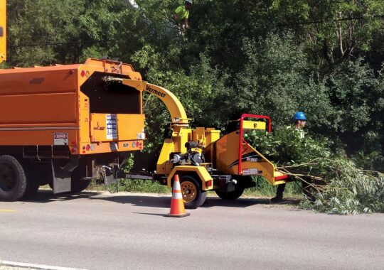 Commercial Tree Services-Coral Gables FL Tree Trimming and Stump Grinding Services-We Offer Tree Trimming Services, Tree Removal, Tree Pruning, Tree Cutting, Residential and Commercial Tree Trimming Services, Storm Damage, Emergency Tree Removal, Land Clearing, Tree Companies, Tree Care Service, Stump Grinding, and we're the Best Tree Trimming Company Near You Guaranteed!