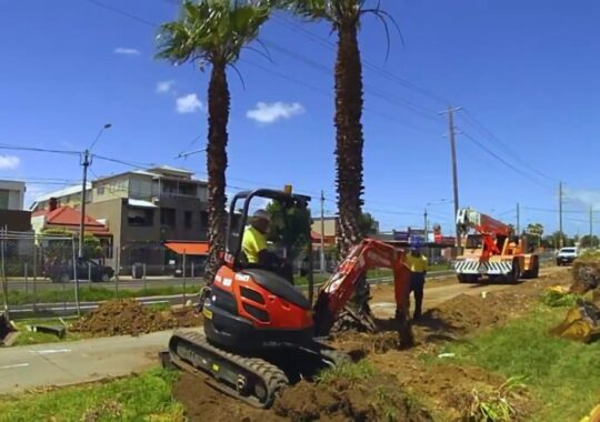 Palm Tree Removal-Coral Gables FL Tree Trimming and Stump Grinding Services-We Offer Tree Trimming Services, Tree Removal, Tree Pruning, Tree Cutting, Residential and Commercial Tree Trimming Services, Storm Damage, Emergency Tree Removal, Land Clearing, Tree Companies, Tree Care Service, Stump Grinding, and we're the Best Tree Trimming Company Near You Guaranteed!