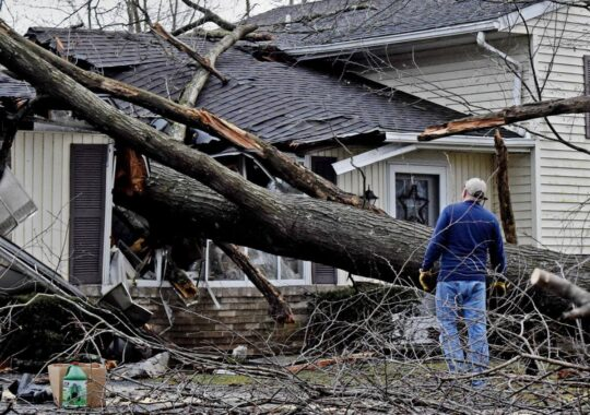 Storm Damage-Coral Gables FL Tree Trimming and Stump Grinding Services-We Offer Tree Trimming Services, Tree Removal, Tree Pruning, Tree Cutting, Residential and Commercial Tree Trimming Services, Storm Damage, Emergency Tree Removal, Land Clearing, Tree Companies, Tree Care Service, Stump Grinding, and we're the Best Tree Trimming Company Near You Guaranteed!
